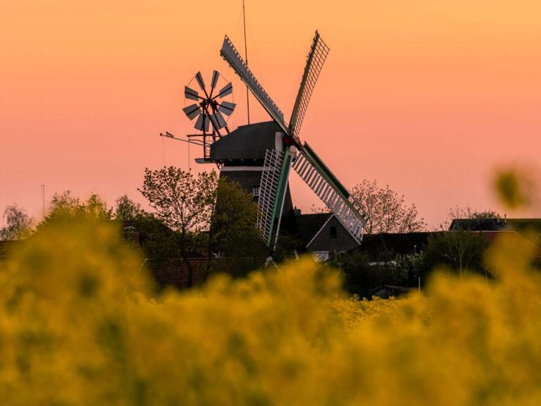 Windmühle im Sonnenuntergang